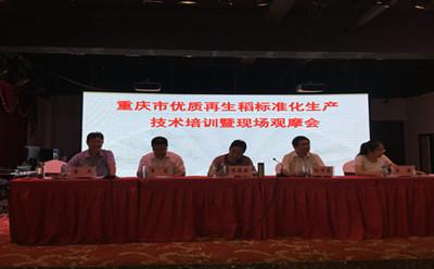 重庆市召开优质再生稻标准化生产技术培训暨现场观摩会