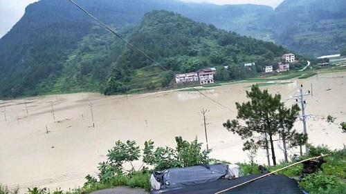 丰都县暨龙镇乌羊坝村玉米、马铃薯被水淹