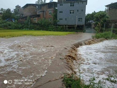 兴义镇水稻被水淹没