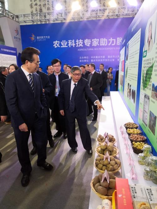 市人大常委会副主任王越巡视马铃薯展台