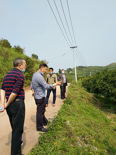 我市柑橘专家服务团助力解决长寿区永兴村产业难题