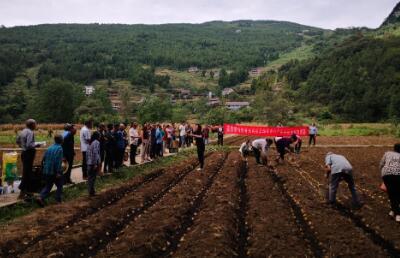 积极开展秋马铃薯技术培训,助力薯农增收致富
